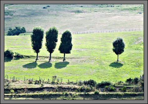 Auvergne-2006---Ohne-Titel-