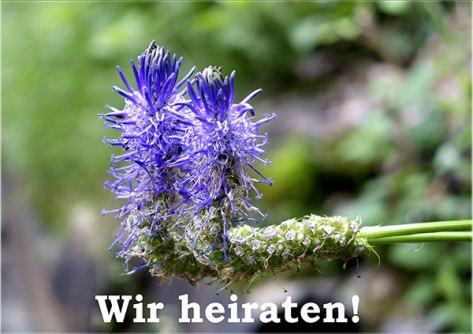 Piemont-2015-Wir-heiraten-G