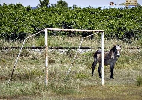 Portugal-2011-Nach-dem-Spie