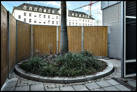 Stuttgart-2015-Dorotheenquartier-24-Druck-40x60-Baum-vor-Bauzaun