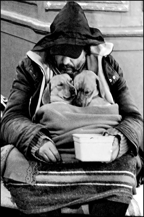 Paris 2010 Stadtstreicher mit Hunden 40x60 schwarz_weiss 2010_04_12 Kopie