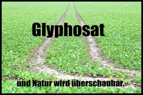 Zingst-2018-Glyphosat-01-40